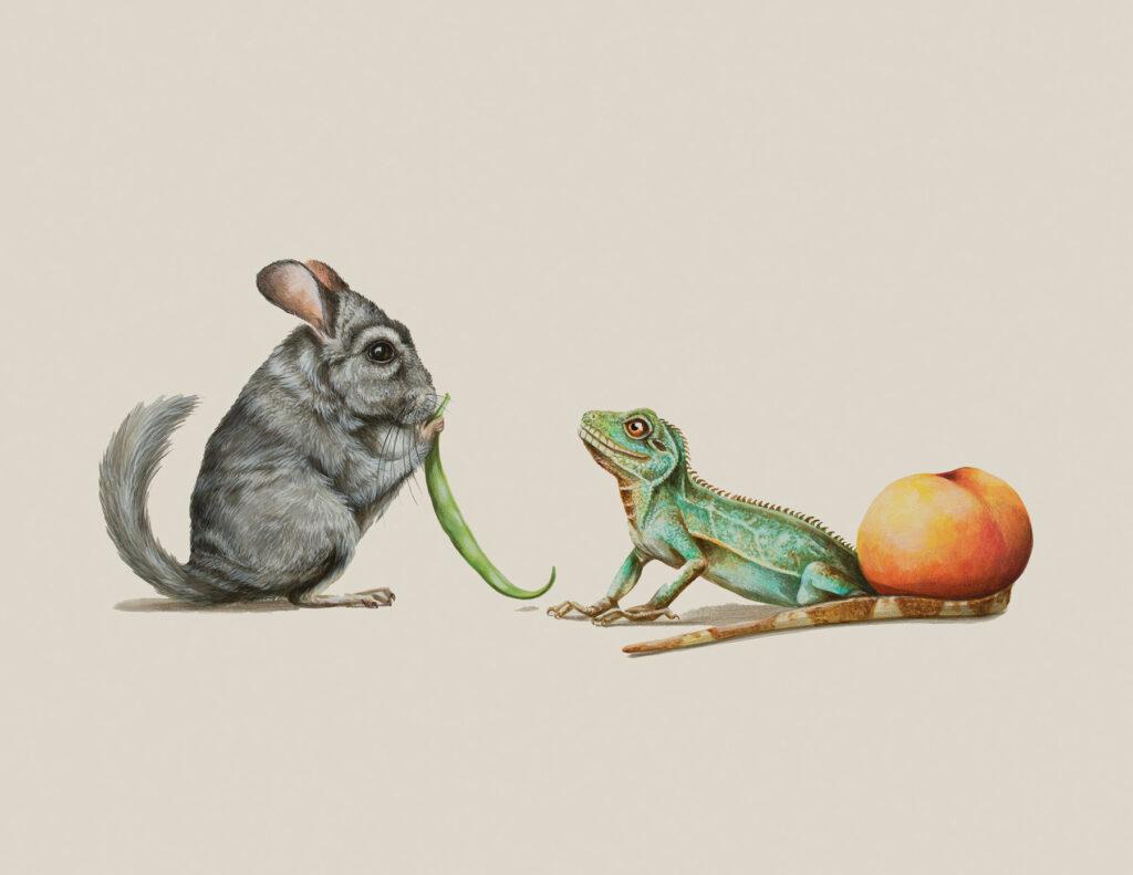 Tricia George: The Chinchilla and The Lizard