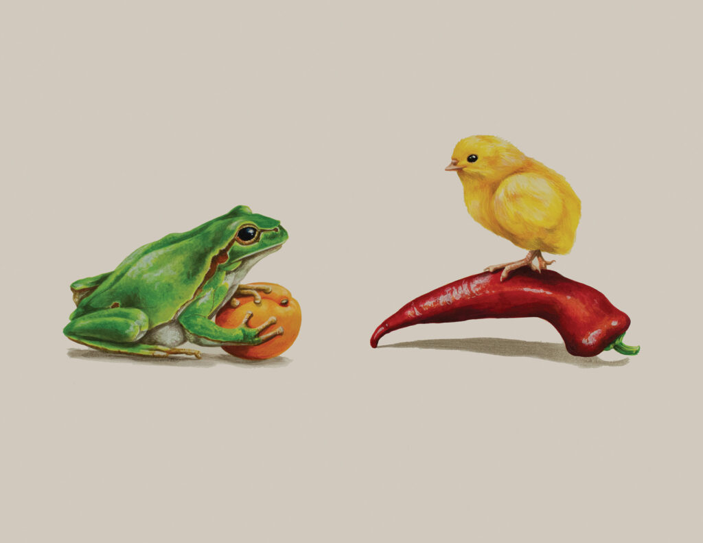 Tricia George: The Frog and The Chick