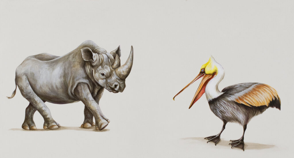 Tricia George: The Rhino and The Brown Pelican