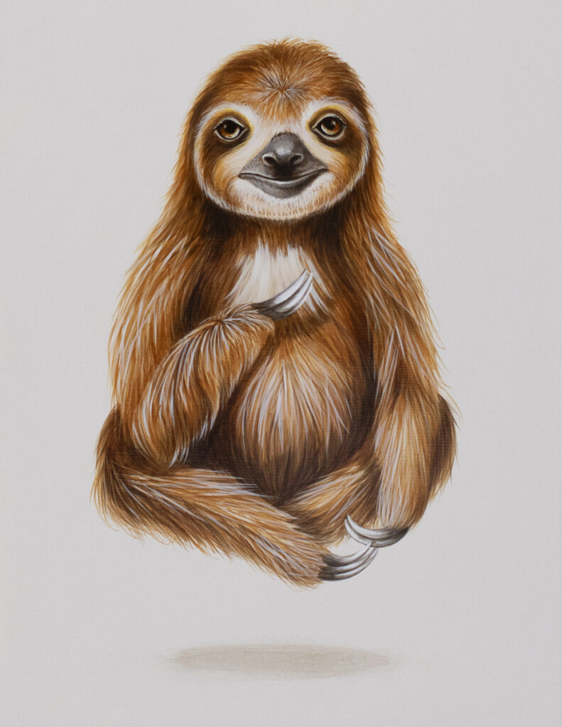 Tricia George: The Sloth