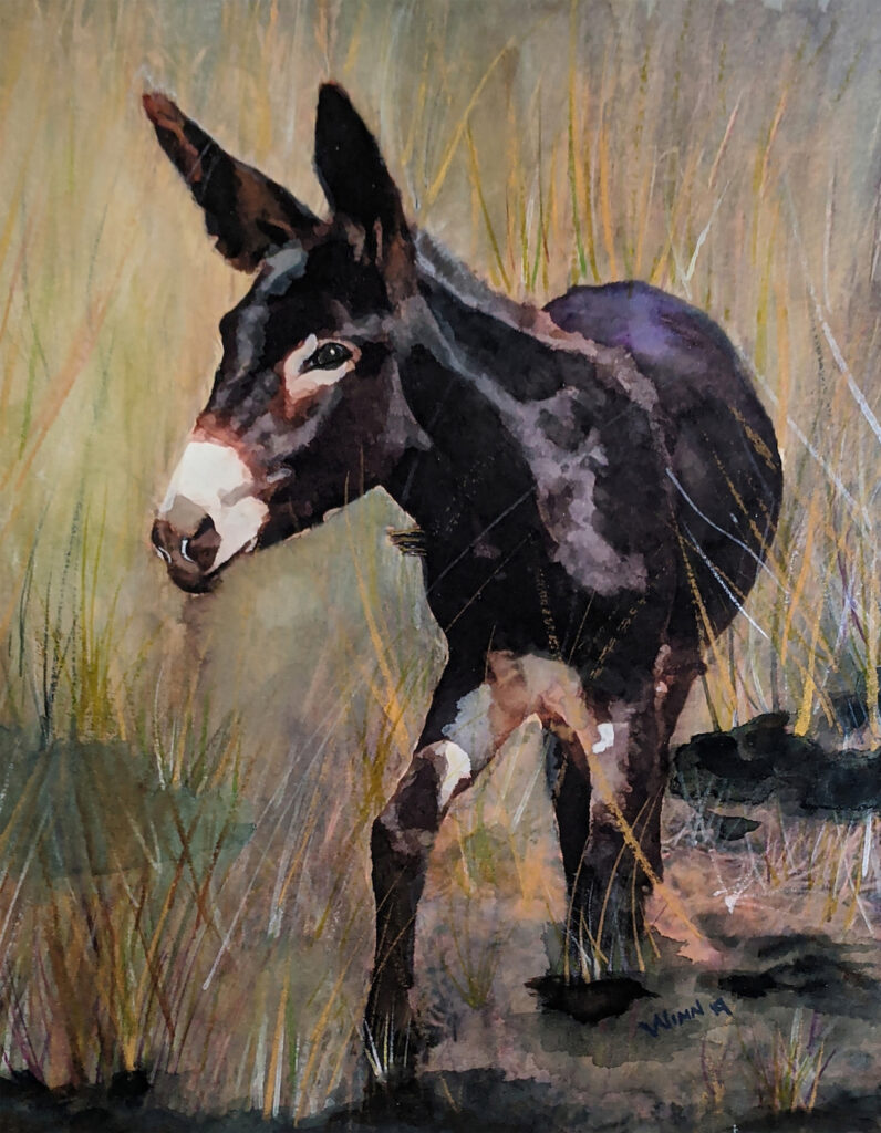 Penny Winn: Donkey Visitor