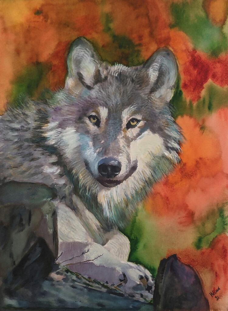 Penny Winn: El Lobo