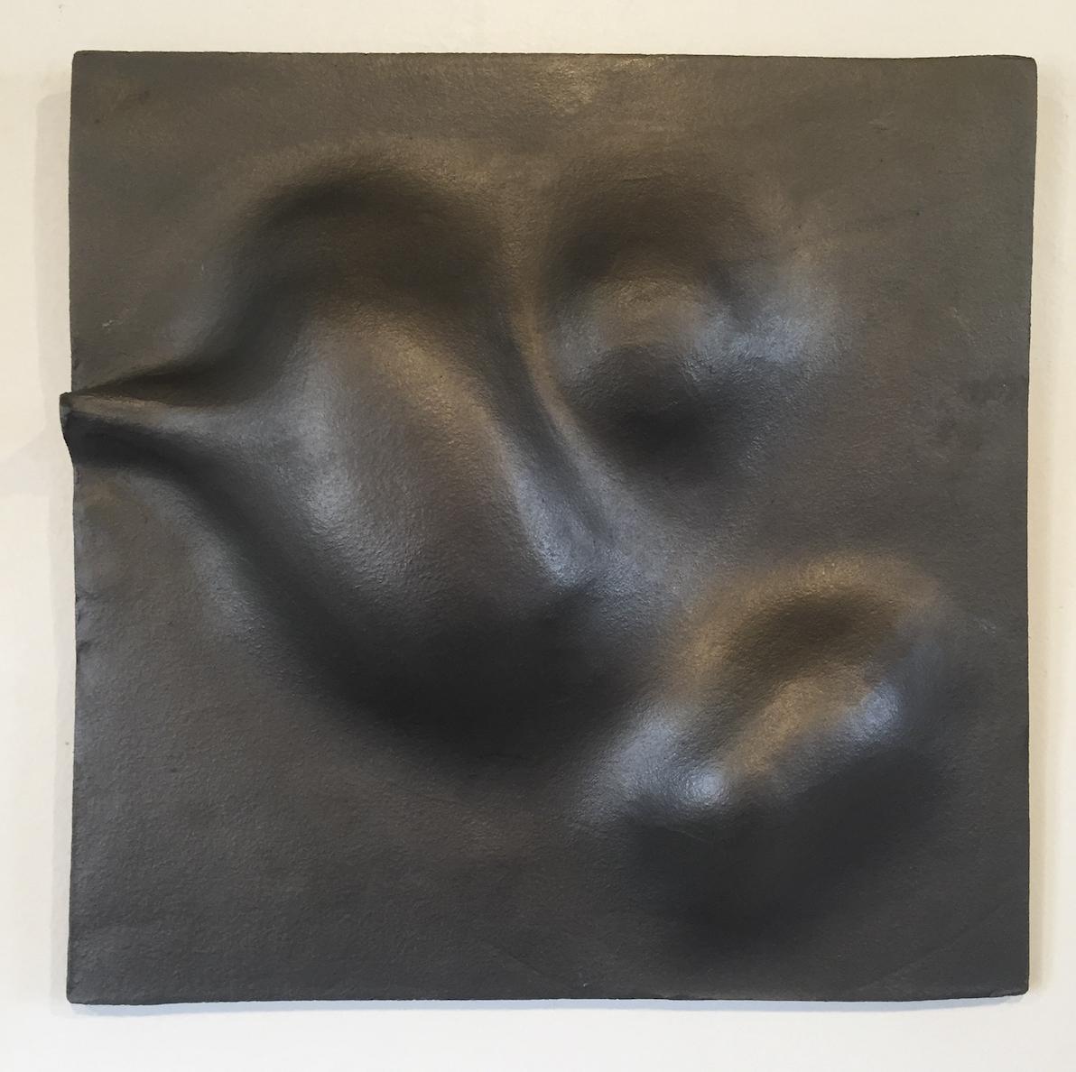 Cecily Colbert: Fertile Ground