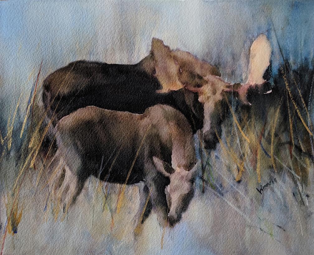 Penny Winn: Grazing Moose