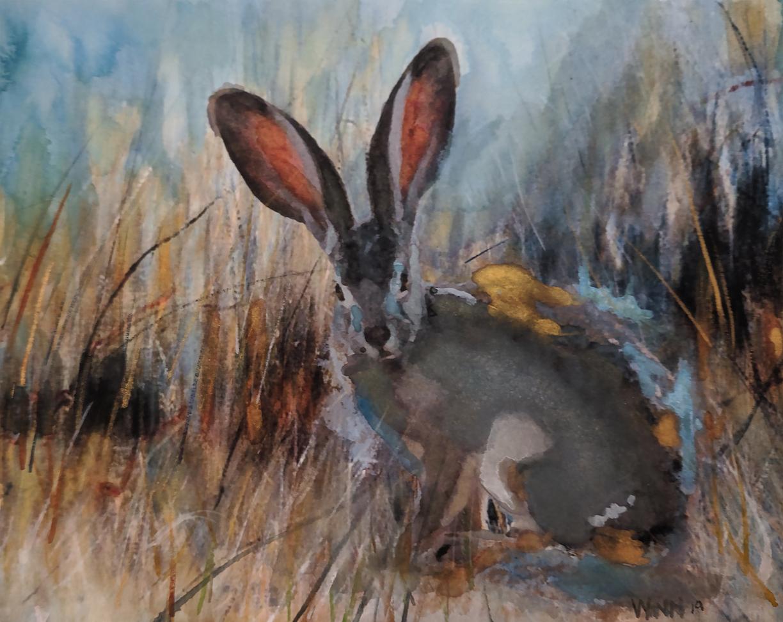 Penny Winn: Hare in the Grass