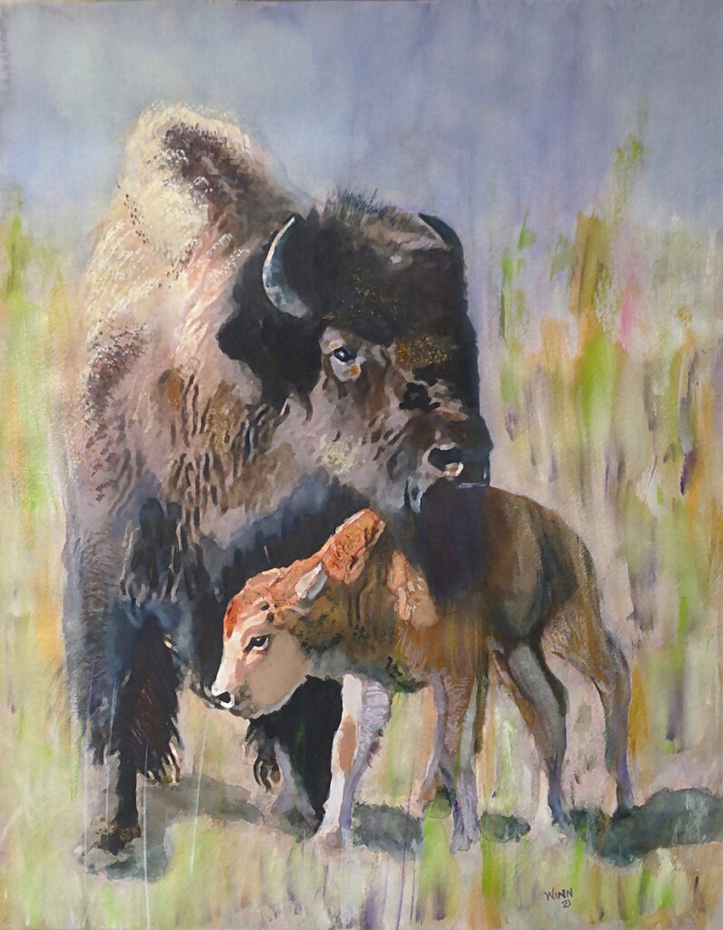 Penny Winn: Mama and Baby Bison