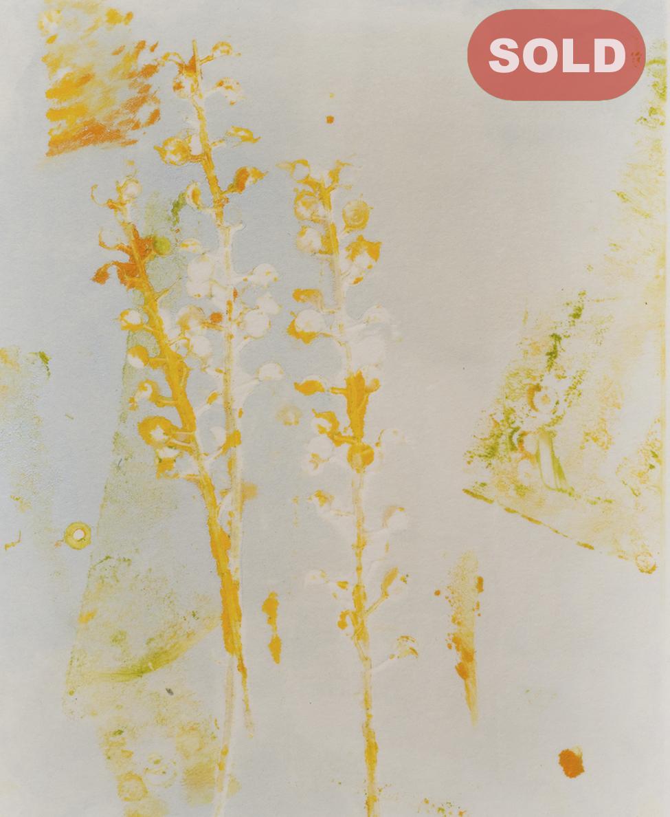 Joani Murphy: Spring I