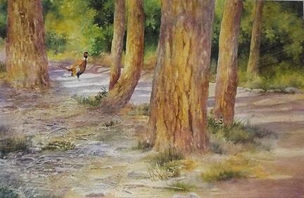 Carol Sparks: Walk in the Bosque