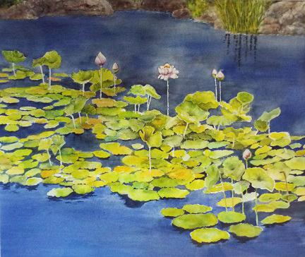Carol Sparks: Water Garden