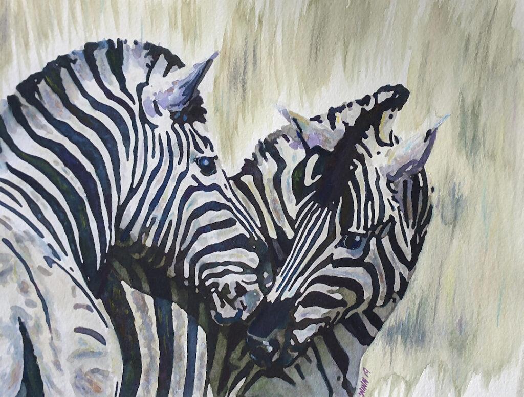 Penny Winn: Zebras