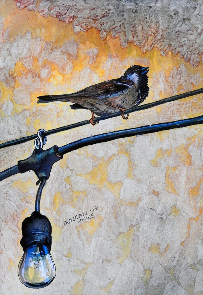 Woody Duncan: Bird On A Wire
