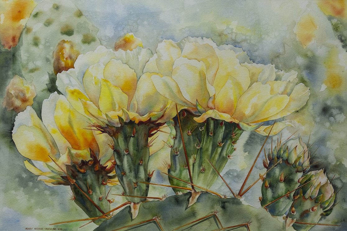 Mary Moser-Perkins: Mellow Yellow
