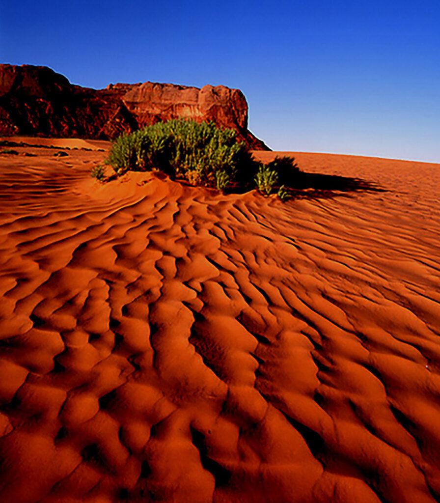 Glenn Hohnstreiter: Sea of Sand