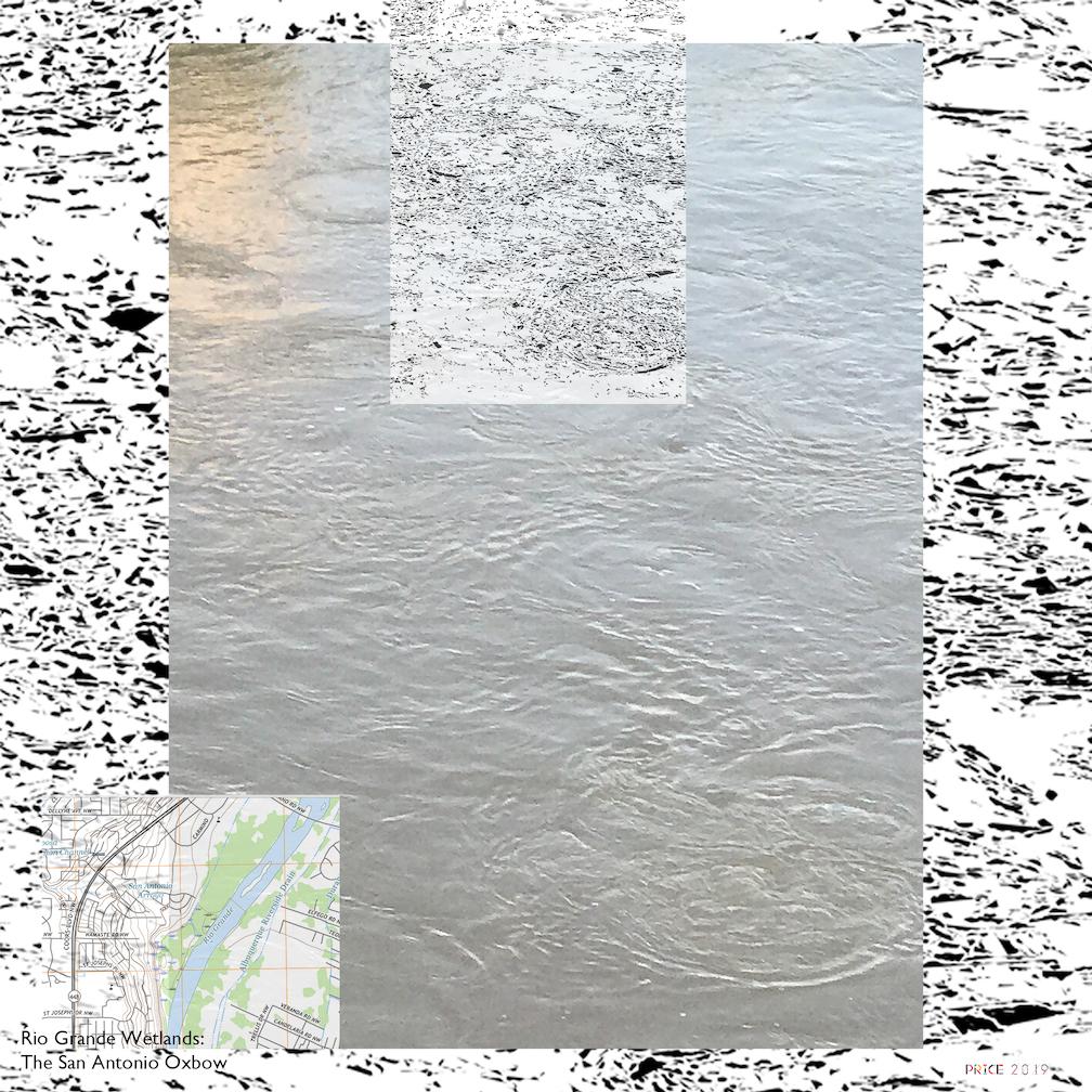Jonathan Reeve Price: The Rio Grande Wetlands; Flow