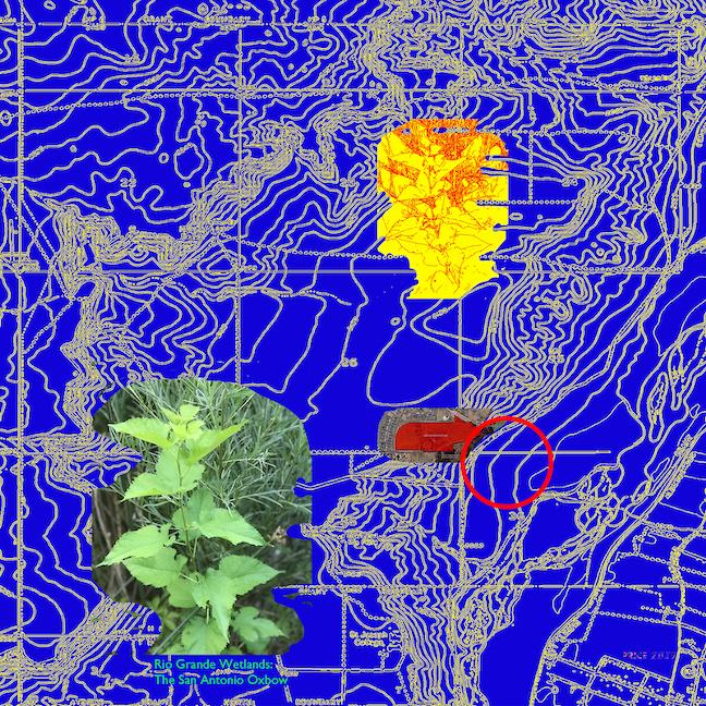 Jonathan Reeve Price: The Rio Grande Wetlands; San Antonio Oxbow