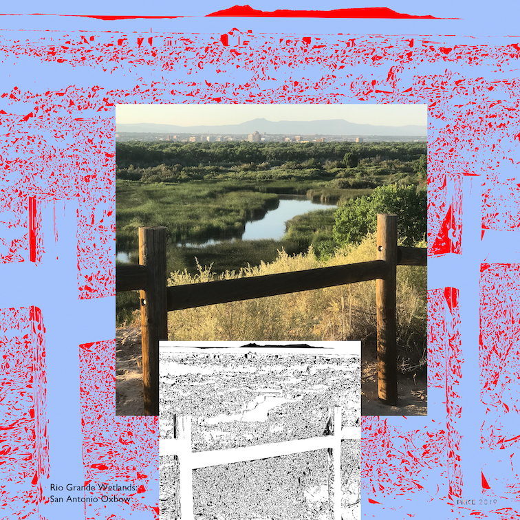 Jonathan Reeve Price: The Rio Grande Wetlands; Through the Fence